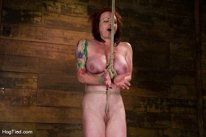 Photo number 14 from Kylie Ireland, the name that says it all. Huge toys, Huge Orgasms shot for Hogtied on Kink.com. Featuring Kylie Ireland in hardcore BDSM & Fetish porn.