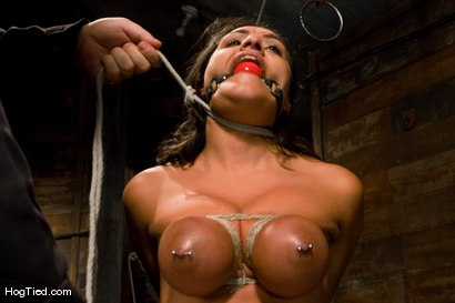 Photo number 10 from Charley Chase in her very first Hogtied shoot shot for Hogtied on Kink.com. Featuring Charley Chase in hardcore BDSM & Fetish porn.