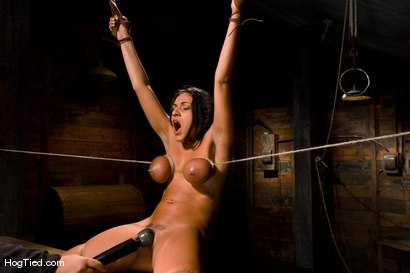 Photo number 8 from Charley Chase in her very first Hogtied shoot shot for Hogtied on Kink.com. Featuring Charley Chase in hardcore BDSM & Fetish porn.