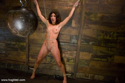 Photo number 13 from Welcome back Gina Caruso<br> MILF, fitness model and sports announcer. shot for Hogtied on Kink.com. Featuring Gina Caruso and Luke Degre in hardcore BDSM & Fetish porn.