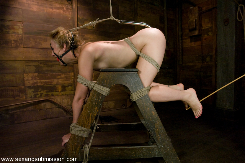 SexAndSubmission - Dylan - Kink