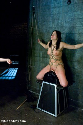 Photo number 12 from Raina Verene shot for whippedass on Kink.com. Featuring Raina Verene and Claire Adams in hardcore BDSM & Fetish porn.
