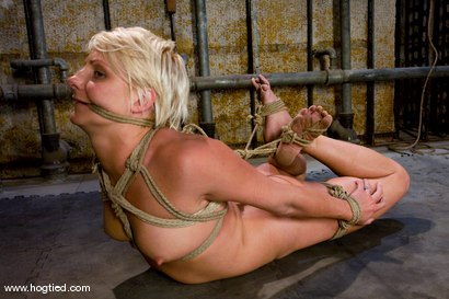 Photo number 7 from Vendetta returns to Hogtied <br> You can only see her exclusively  at Kink. shot for Hogtied on Kink.com. Featuring Vendetta and Claire Adams in hardcore BDSM & Fetish porn.