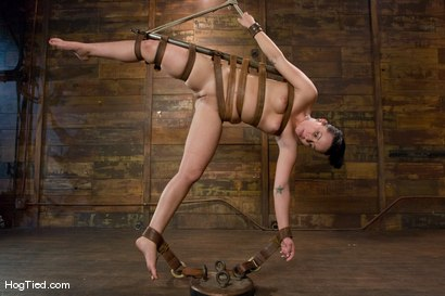 Photo number 8 from Alexa bound and made to come again & again shot for Hogtied on Kink.com. Featuring Lochai and Alexa Von Tess in hardcore BDSM & Fetish porn.