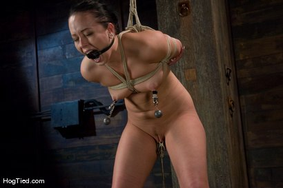 Photo number 12 from Alexa bound and made to come again & again shot for Hogtied on Kink.com. Featuring Lochai and Alexa Von Tess in hardcore BDSM & Fetish porn.