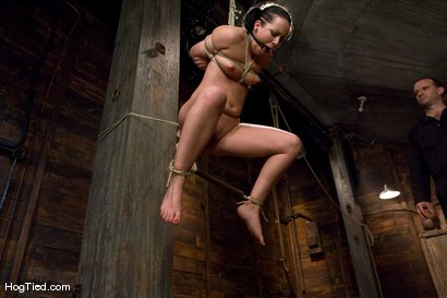Photo number 14 from Alexa bound and made to come again & again shot for Hogtied on Kink.com. Featuring Lochai and Alexa Von Tess in hardcore BDSM & Fetish porn.