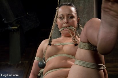 Photo number 5 from Alexa bound and made to come again & again shot for Hogtied on Kink.com. Featuring Lochai and Alexa Von Tess in hardcore BDSM & Fetish porn.