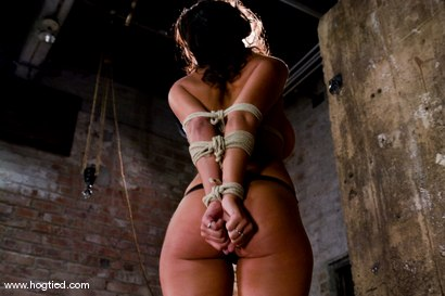 Photo number 2 from WARNING FOR ALL HOGTIED MEMBERS:<BR> Most intense orgasms in bondage we have ever shot. shot for Hogtied on Kink.com. Featuring Charley Chase and Lochai in hardcore BDSM & Fetish porn.
