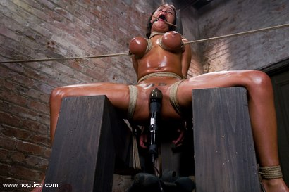 Photo number 11 from WARNING FOR ALL HOGTIED MEMBERS:<BR> Most intense orgasms in bondage we have ever shot. shot for Hogtied on Kink.com. Featuring Charley Chase and Lochai in hardcore BDSM & Fetish porn.