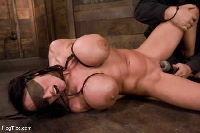 Photo number 10 from There are big tits and then there is MASSIVE!<br>Welcome Lisa Lipps to her first bondage scene ever. shot for Hogtied on Kink.com. Featuring Lisa Lipps in hardcore BDSM & Fetish porn.