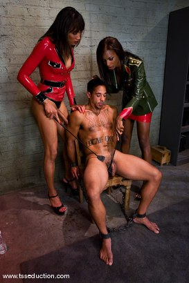 Photo number 7 from Yasmin Lee, Natassia Dream & Lobo shot for TS Seduction on Kink.com. Featuring Yasmin Lee, Natassia Dreams and Lobo in hardcore BDSM & Fetish porn.