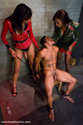 Photo number 8 from Yasmin Lee, Natassia Dream & Lobo shot for TS Seduction on Kink.com. Featuring Yasmin Lee, Natassia Dreams and Lobo in hardcore BDSM & Fetish porn.