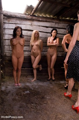 Photo number 2 from Sandra's Farm: Princess Donna Called in to Assist! shot for Wired Pussy on Kink.com. Featuring Sandra Romain, Lea Lexis, Jenna Lovely and Claudia Jamsson in hardcore BDSM & Fetish porn.