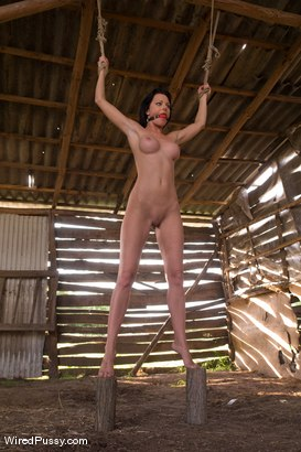 Photo number 7 from Sandra's Farm: Princess Donna Called in to Assist! shot for Wired Pussy on Kink.com. Featuring Sandra Romain, Lea Lexis, Jenna Lovely and Claudia Jamsson in hardcore BDSM & Fetish porn.