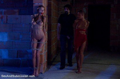 Photo number 5 from The Dark Crevice shot for Sex And Submission on Kink.com. Featuring Steve Holmes, Cj and Gilda Roberts in hardcore BDSM & Fetish porn.