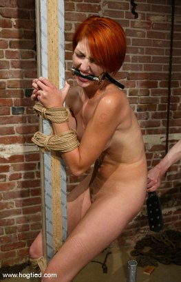 Photo number 11 from Ivy shot for Hogtied on Kink.com. Featuring Ivy in hardcore BDSM & Fetish porn.