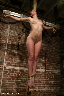 Photo number 4 from Ivy shot for Hogtied on Kink.com. Featuring Ivy in hardcore BDSM & Fetish porn.