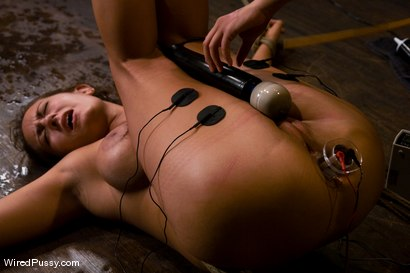 Photo number 14 from Trina Michaels gets her huge tits tied and wired! shot for Wired Pussy on Kink.com. Featuring Trina Michaels and Annie Cruz in hardcore BDSM & Fetish porn.