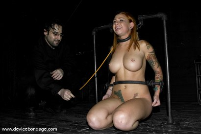 Photo number 10 from Hard Ass Punishment shot for Device Bondage on Kink.com. Featuring Scarlett Pain in hardcore BDSM & Fetish porn.