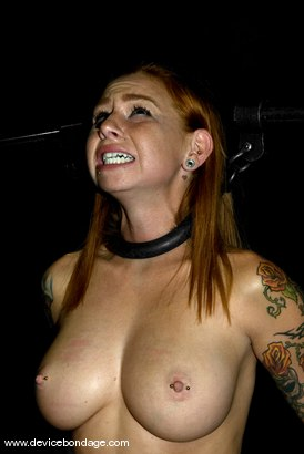 Photo number 11 from Hard Ass Punishment shot for Device Bondage on Kink.com. Featuring Scarlett Pain in hardcore BDSM & Fetish porn.