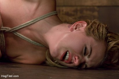 Photo number 10 from Lexi Belle: Pain is her pleasure shot for Hogtied on Kink.com. Featuring Lexi Belle in hardcore BDSM & Fetish porn.