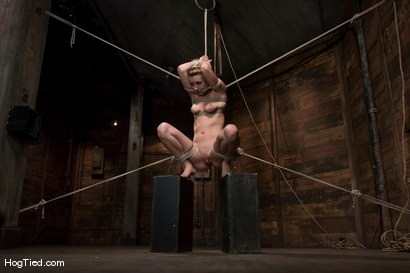 Photo number 12 from Lexi Belle: Pain is her pleasure shot for Hogtied on Kink.com. Featuring Lexi Belle in hardcore BDSM & Fetish porn.