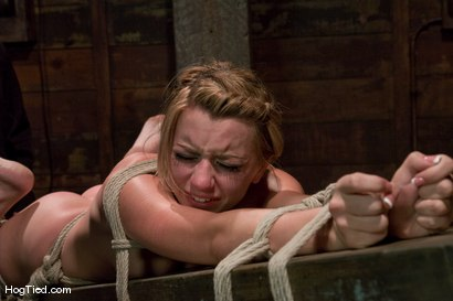 Photo number 6 from Lexi Belle: Pain is her pleasure shot for Hogtied on Kink.com. Featuring Lexi Belle in hardcore BDSM & Fetish porn.