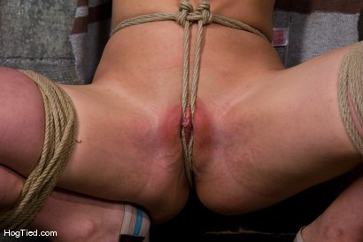 Photo number 2 from Dylan, new to Hogtied <br> but not to squirting orgasms shot for Hogtied on Kink.com. Featuring Dylan Ryan and Damon Pierce in hardcore BDSM & Fetish porn.