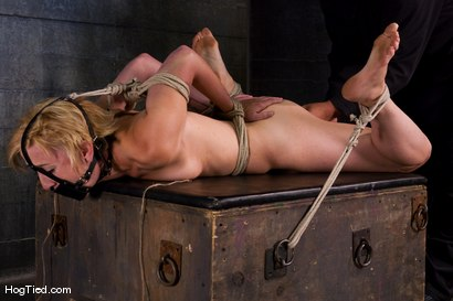 Photo number 4 from Dylan, new to Hogtied <br> but not to squirting orgasms shot for Hogtied on Kink.com. Featuring Dylan Ryan and Damon Pierce in hardcore BDSM & Fetish porn.
