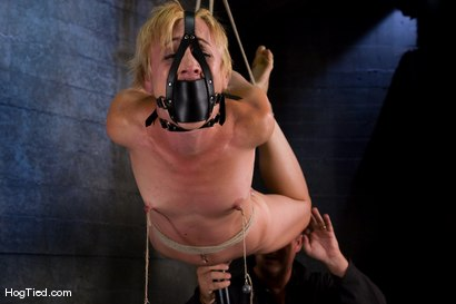 Photo number 6 from Dylan, new to Hogtied <br> but not to squirting orgasms shot for Hogtied on Kink.com. Featuring Dylan Ryan and Damon Pierce in hardcore BDSM & Fetish porn.