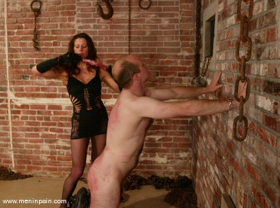 Photo number 11 from Mike and Kym Wilde shot for Men In Pain on Kink.com. Featuring Mike and Kym Wilde in hardcore BDSM & Fetish porn.