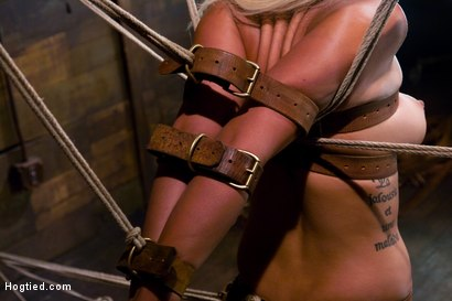 Photo number 5 from Welcome the amazing beautiful<br> Bridgette B to her first Hogtied shoot. shot for Hogtied on Kink.com. Featuring Bridgette B and Damon Pierce in hardcore BDSM & Fetish porn.