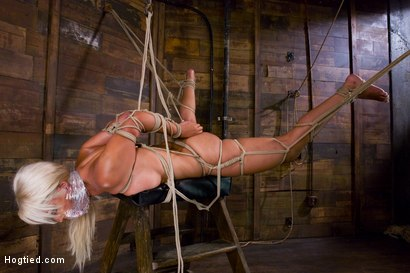 Photo number 8 from Welcome the amazing beautiful<br> Bridgette B to her first Hogtied shoot. shot for Hogtied on Kink.com. Featuring Bridgette B and Damon Pierce in hardcore BDSM & Fetish porn.
