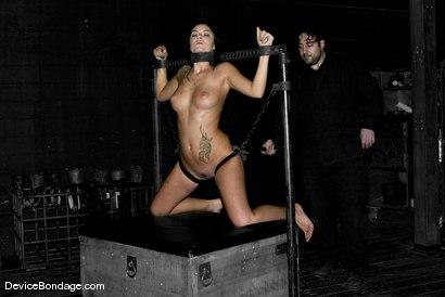 Nude furryanime porn