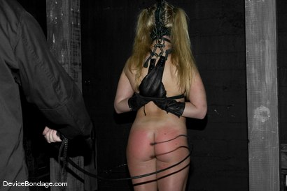 Photo number 10 from Dia Zerva Live aka Feel the Burn shot for Device Bondage on Kink.com. Featuring Dia Zerva in hardcore BDSM & Fetish porn.