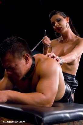 Photo number 13 from The New Pet shot for TS Seduction on Kink.com. Featuring Ariel Everitts and Aaron Lee in hardcore BDSM & Fetish porn.