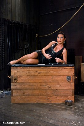 Photo number 3 from The New Pet shot for TS Seduction on Kink.com. Featuring Ariel Everitts and Aaron Lee in hardcore BDSM & Fetish porn.