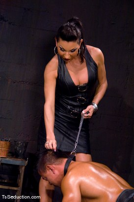 Photo number 4 from The New Pet shot for TS Seduction on Kink.com. Featuring Ariel Everitts and Aaron Lee in hardcore BDSM & Fetish porn.