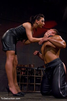 Photo number 7 from The New Pet shot for TS Seduction on Kink.com. Featuring Ariel Everitts and Aaron Lee in hardcore BDSM & Fetish porn.
