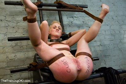 Photo number 9 from The Training Of Dylan, Day One shot for The Training Of O on Kink.com. Featuring Dylan Ryan and Maestro in hardcore BDSM & Fetish porn.