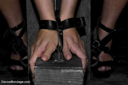 Photo number 5 from Sara Faye, Elyse and Claire Adams shot for Device Bondage on Kink.com. Featuring Claire Adams, Sara Faye and Elyse in hardcore BDSM & Fetish porn.