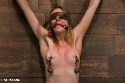 Photo number 2 from Sasha Lexing takes a beating in stride and then some shot for Hogtied on Kink.com. Featuring Sasha Lexing in hardcore BDSM & Fetish porn.