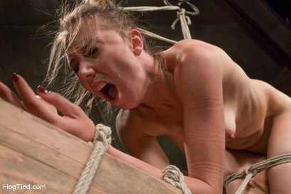 Photo number 12 from Sasha Lexing takes a beating in stride and then some shot for Hogtied on Kink.com. Featuring Sasha Lexing in hardcore BDSM & Fetish porn.