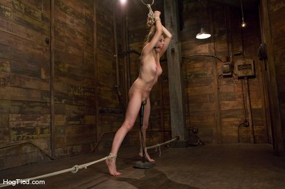 Photo number 14 from Sasha Lexing takes a beating in stride and then some shot for Hogtied on Kink.com. Featuring Sasha Lexing in hardcore BDSM & Fetish porn.