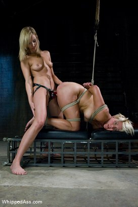 Photo number 12 from A CLASSIC FAVORITE: Vendetta in the Wall!!! <br> Maitresse Madeline's  shot for Whipped Ass on Kink.com. Featuring Maitresse Madeline Marlowe  and Vendetta in hardcore BDSM & Fetish porn.