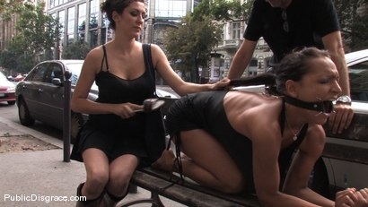 Photo number 4 from Sabrina Sweet shot for Public Disgrace on Kink.com. Featuring Sabrina Sweet in hardcore BDSM & Fetish porn.