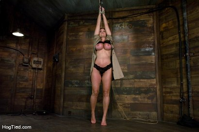 Photo number 2 from Christine is back for more screaming orgasms shot for Hogtied on Kink.com. Featuring Christina Carter in hardcore BDSM & Fetish porn.