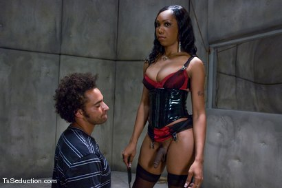 Photo number 6 from The Interrogation shot for TS Seduction on Kink.com. Featuring Sexy Jade and Le Rock in hardcore BDSM & Fetish porn.