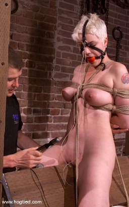 Photo number 7 from Rose shot for Hogtied on Kink.com. Featuring Rose in hardcore BDSM & Fetish porn.