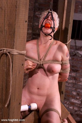 Photo number 10 from Rose shot for Hogtied on Kink.com. Featuring Rose in hardcore BDSM & Fetish porn.